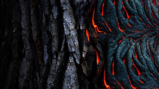flamed wood